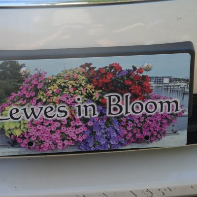 license plate flowers
