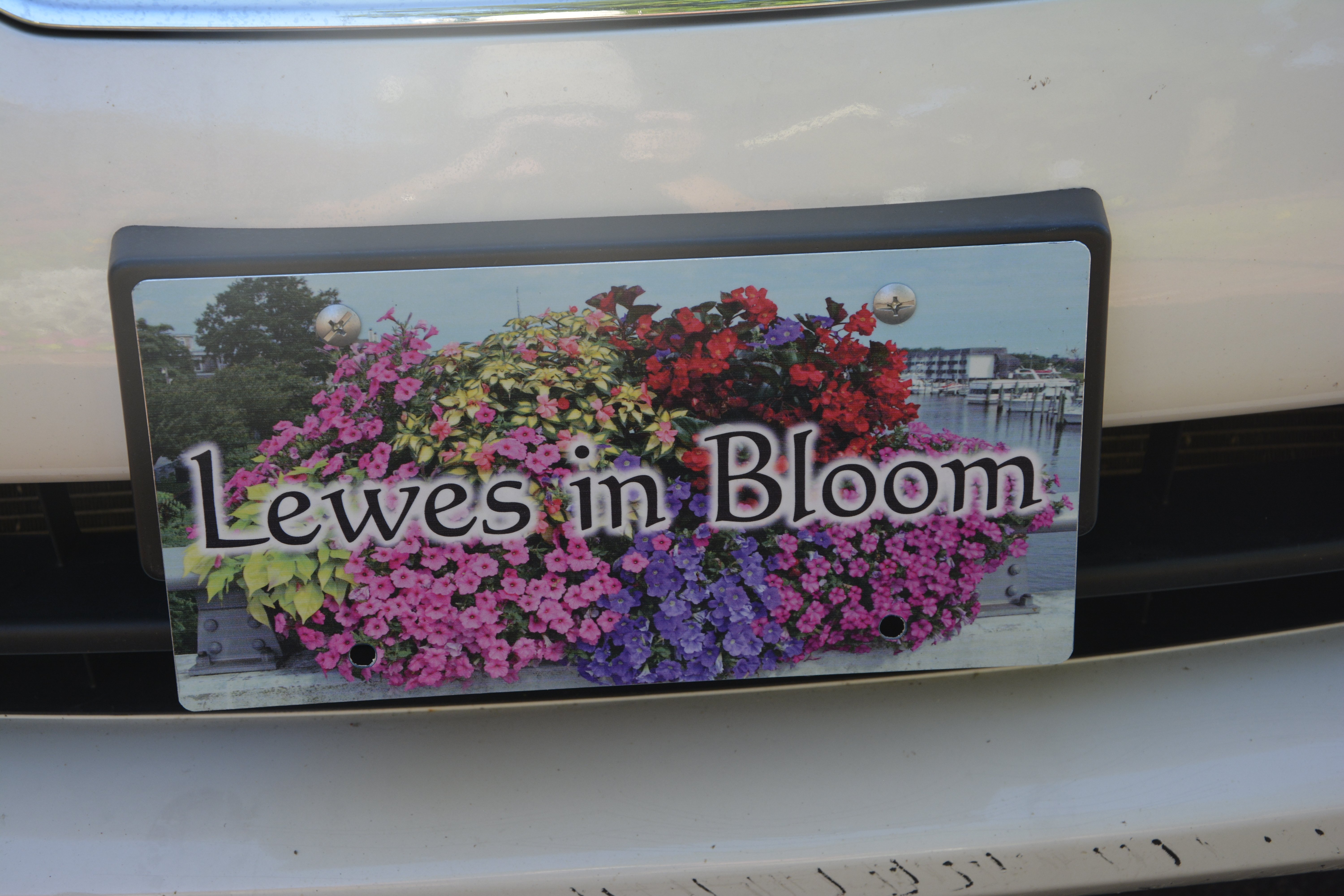 planters and citizens bank with License Plate With Flowers on Lewesinbloom as well License Plate With Flowers as well P as well Leadership Executive  mittee in addition B6b.